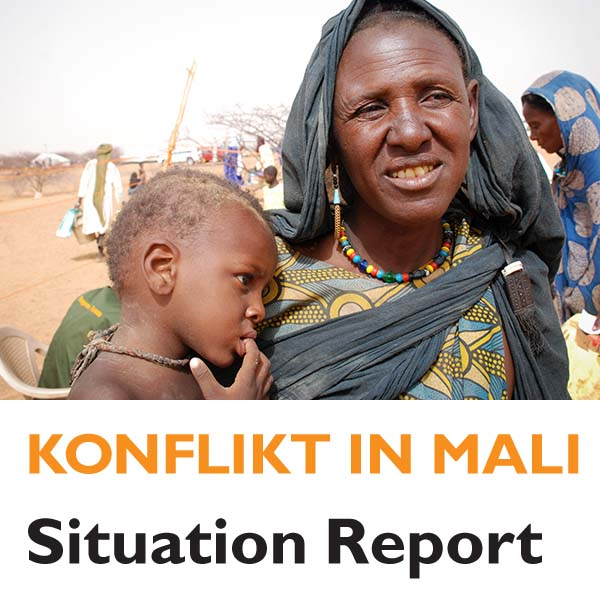 Situation Report Mali 2013-02-22